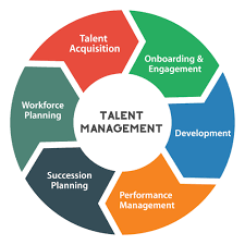 Integrated Talent Management: What Is It And Why Should You Want It?