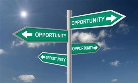 Maximize Opportunities In Business